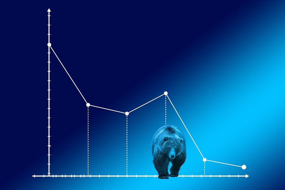 bear-market-4159033_960_720