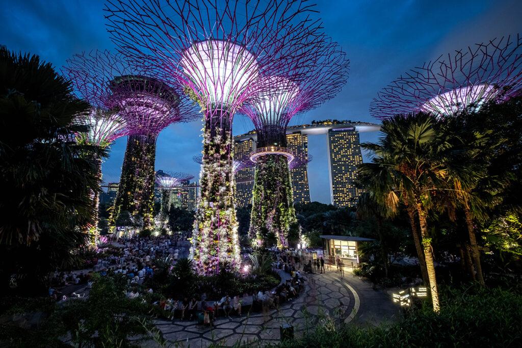 18-07-10---Arbres-(Singapour)