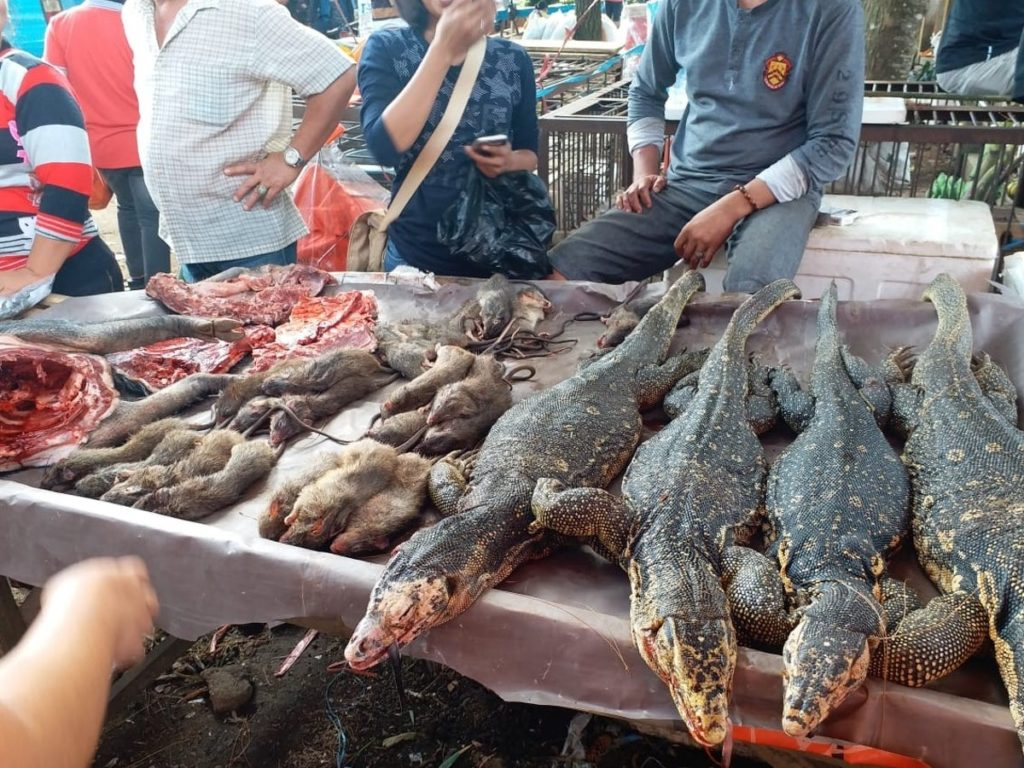 bats-dogs-rats-and-reptiles-on-sale-in-tomohon-market-indonesia-march-28th-2020-1